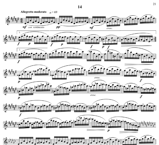 For Flute p23