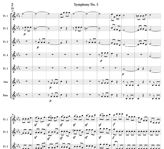 symphony no 5 in cm Symphony no 5 (enescu) topic enescu in the 1940s symphony no 5, in d major is a large-scale composition for orchestra, tenor soloist, and female choir by the romanian composer george enescu, using a text by the romanian poet mihai eminescu.