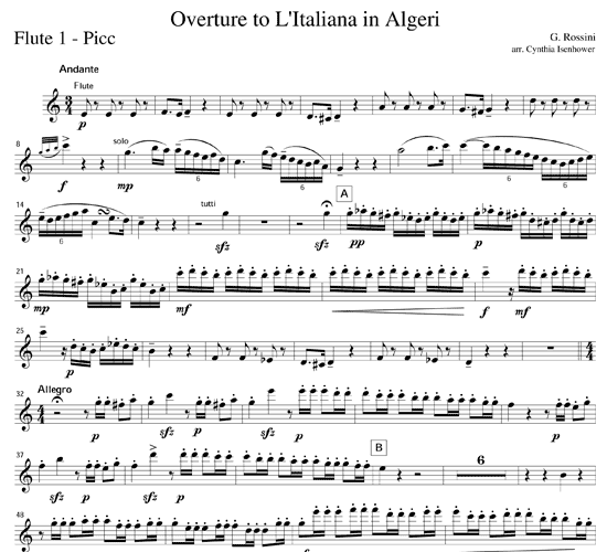 overture-to-litaliana-in-algeri-by-cynthia-isenhower-14