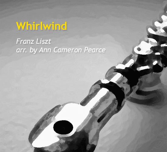 whirlwind-by-ann-cameron-pearce-cover