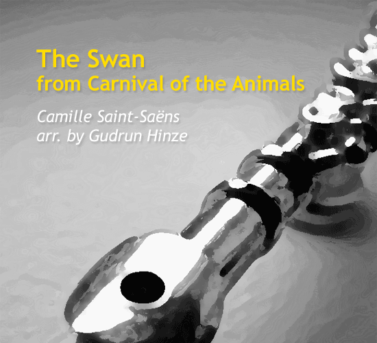 the-swan-from-carnival-of-the-animals-by-gudrun-hinze-cover