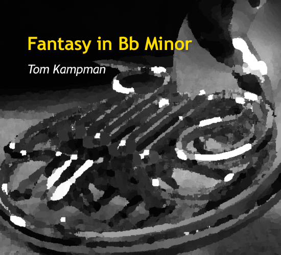 fantasy-in-b-flat-by-tom-kampman-cover